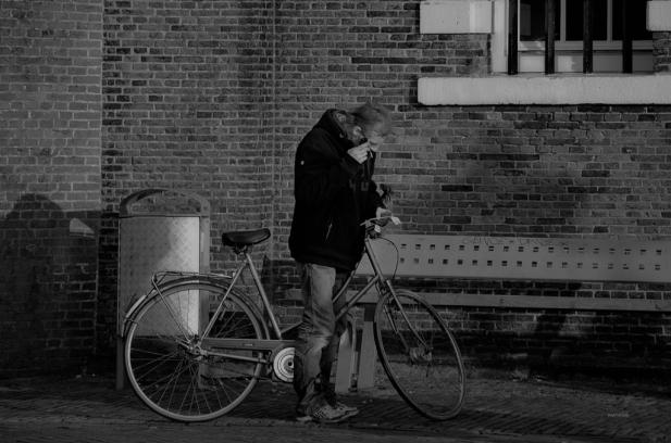 Leiden 81